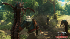 Witcher 3 Blood and Wine Scolopendromorphs